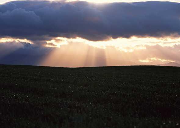 黎明黄昏 225(点击浏览下一张趣图)